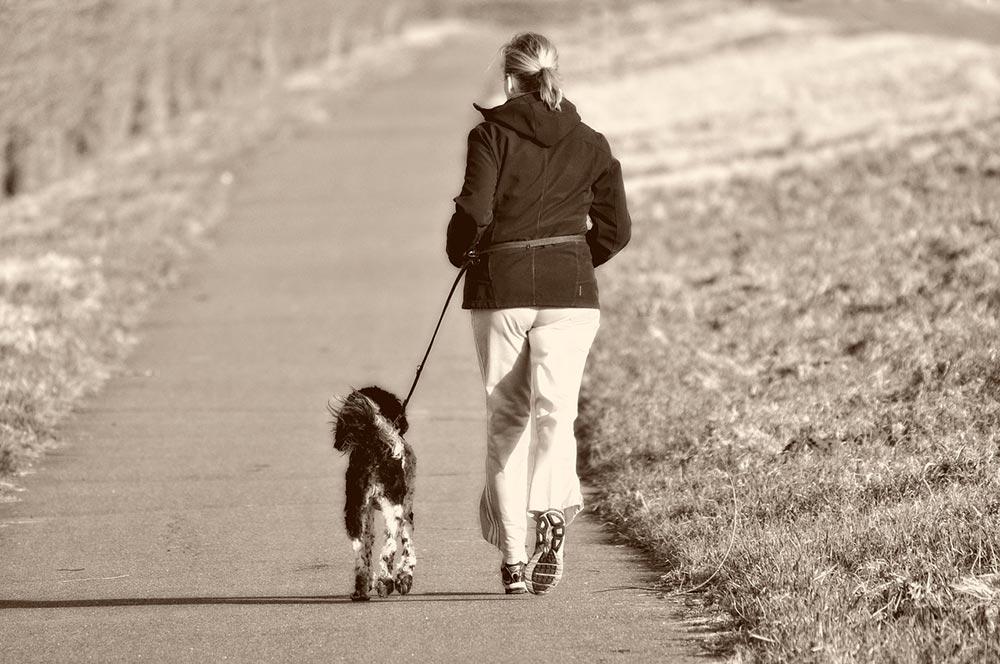 Vycházky se psem dokážou s naší postavou a hmotností divy. A klidně si s ním i zaběhejte!