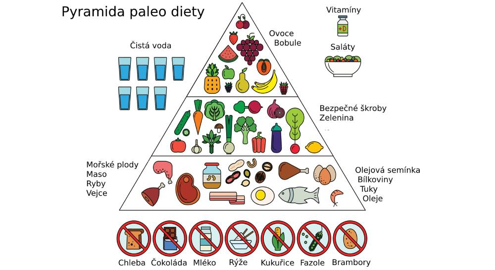 Ukázka, co jíst a nejíst při paleo dietě