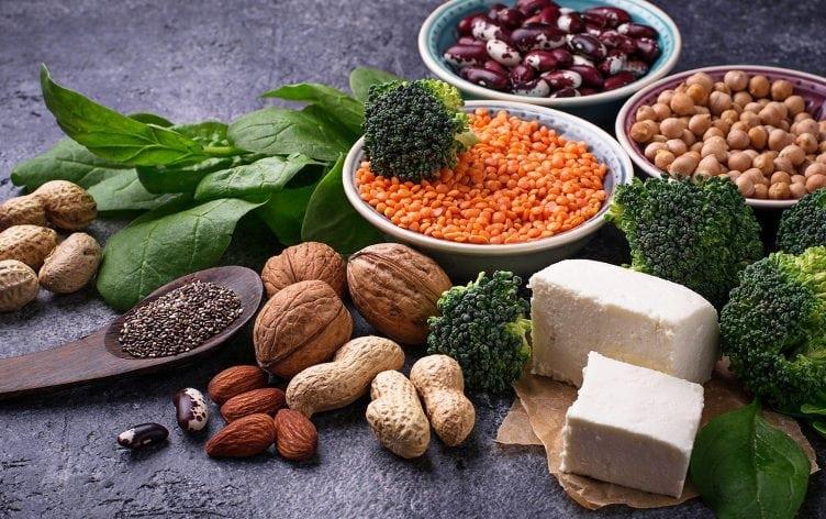 Rostlinné zdroje bílkovin