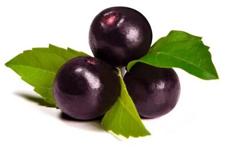 bobule plodu acai v tmavě fialové barvě